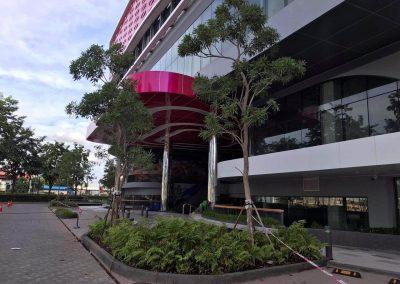 chip-mong-sen-sok-mall (4)